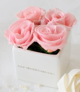 の 言葉 ピンク 薔薇 花