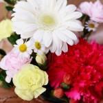 定番から変わり種まで!母の日には感謝を込めて花を贈ろう