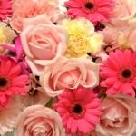【新イベント】フラワーバレンタインとは 女性に花を贈る男性が増えるかも?