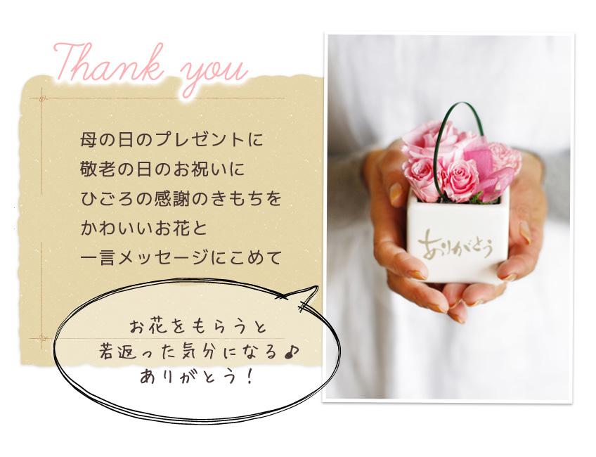 母の日のプレゼントに敬老の日のお祝いにひごろの感謝のきもちをかわいいお花と一言メッセージにこめて