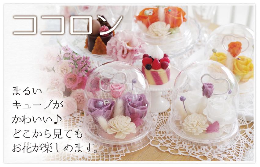 birthday2016_12_b