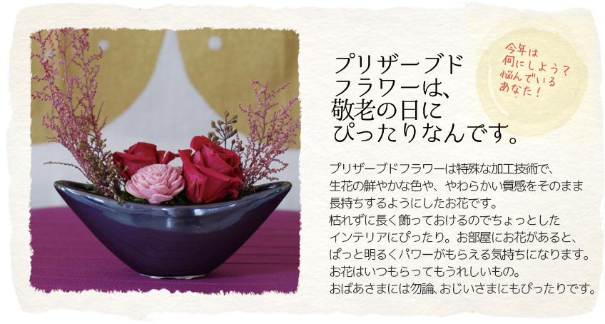 プリザーブドフラワーは、敬老の日のギフトにぴったりなんです。プリザーブドフラワーは特殊な加工技術で、生花の鮮やかな色や、やわらかい質感をそのまま長持ちするようにしたお花です。枯れずに長く飾っておけるのでちょっとしたインテリアにぴったり。お部屋にお花があると、ぱっと明るくパワーがもらえる気持ちになります。お花はいつもらってもうれしいもの。おばあさまには勿論、おじいさまにもぴったりです。