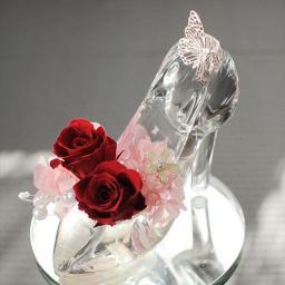 ガラスの靴 レッド 送料無料 プリザーブドフラワーはな物語
