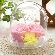 誕生日プレゼントスワロフスキードーム(ピンク)