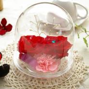 誕生日プレゼントスワロフスキードーム(レッド)